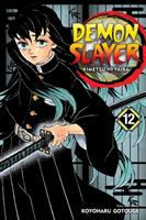 Demon Slayer: Volume 12. : The upper ranks gather /